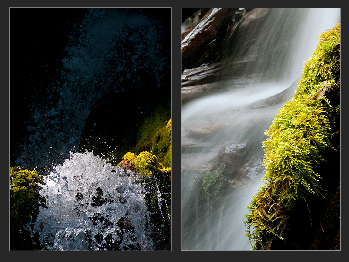 Examples of Shutter Speed
