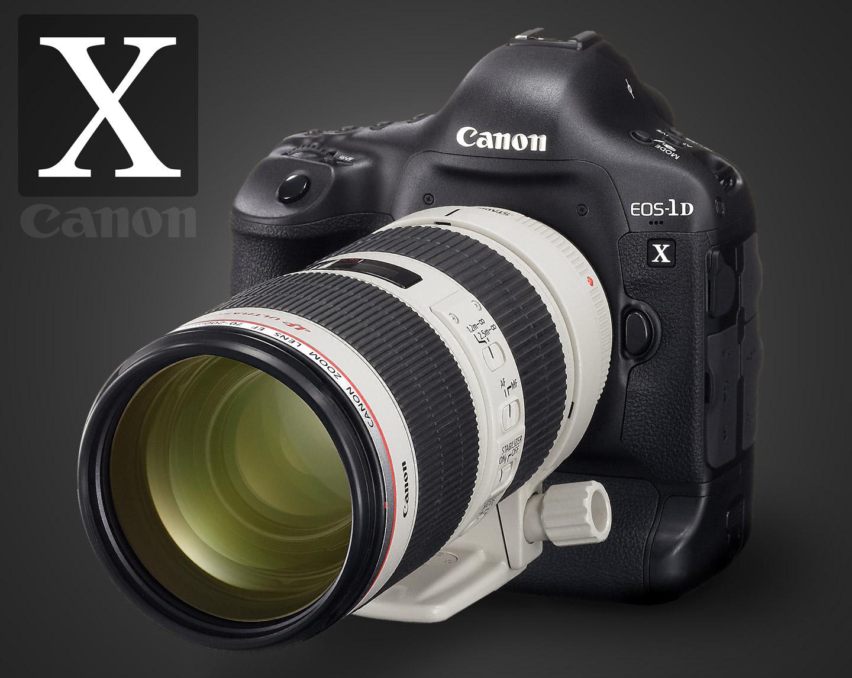 Фотографии из украденных фотоаппаратов 25 фотография