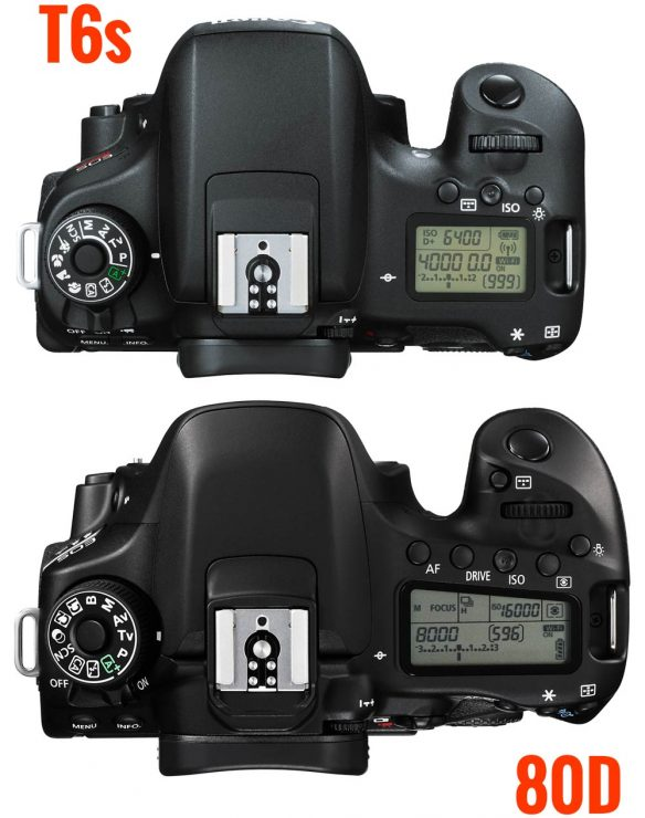Canon-80D-and-t6s-TOP-view