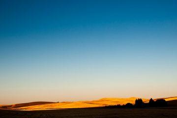 Palouse farmland, Idaho