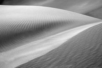 Black and white photography tutorial video