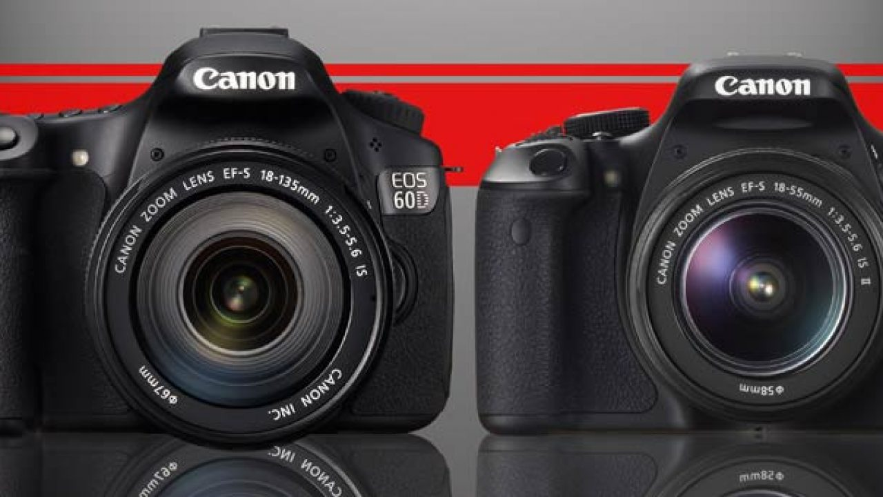Canon Rebel T3i Vs 60d Who Should Buy The T3i Light And Matter