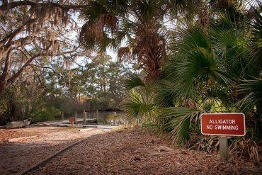 """""""Alligator, No Swimming"""" sign at Oscar Scherer State Park, FL"""