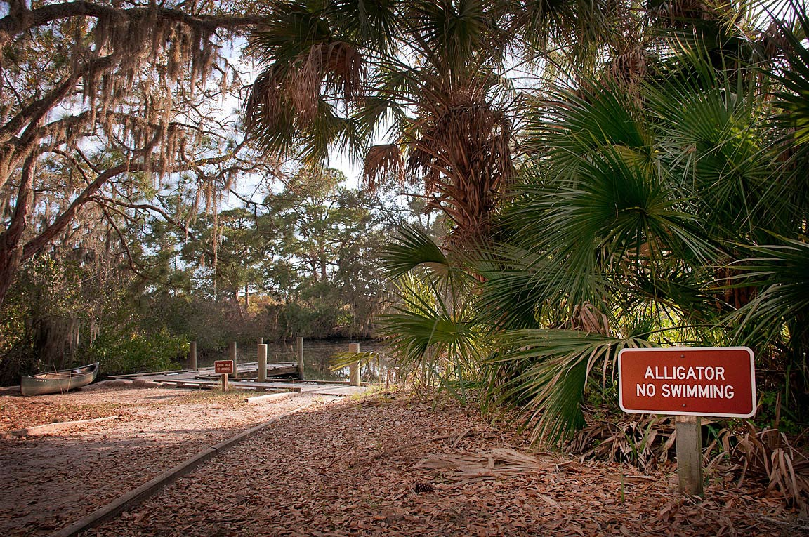 """Alligator, No Swimming"" sign at Oscar Scherer State Park, FL"