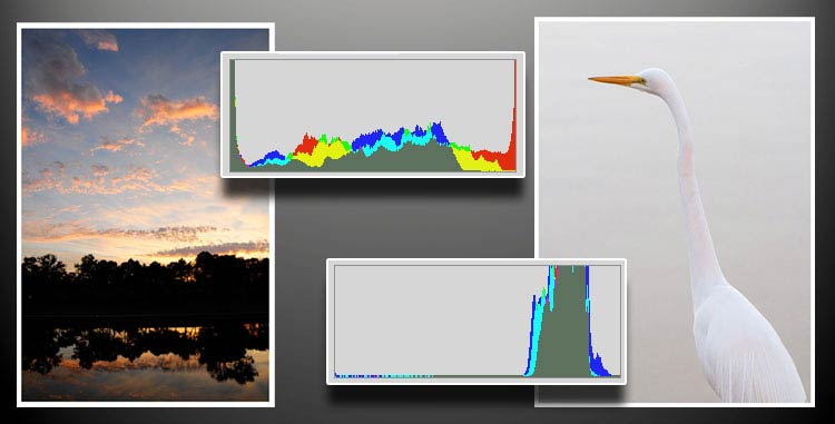 Understanding Your Histogram Part Three
