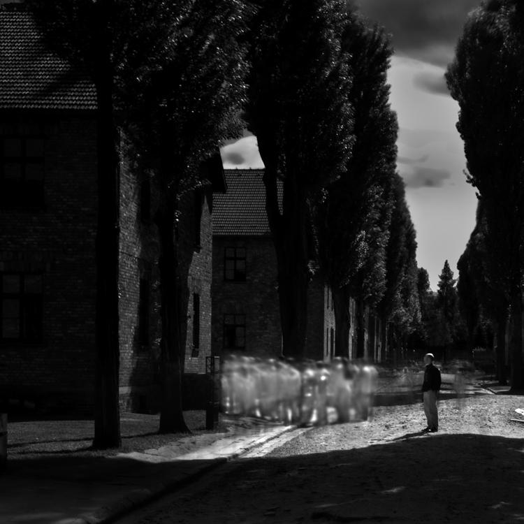 Auschwitz No 4 by Cole Thompson