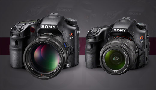 Sony SLT a77 and a65