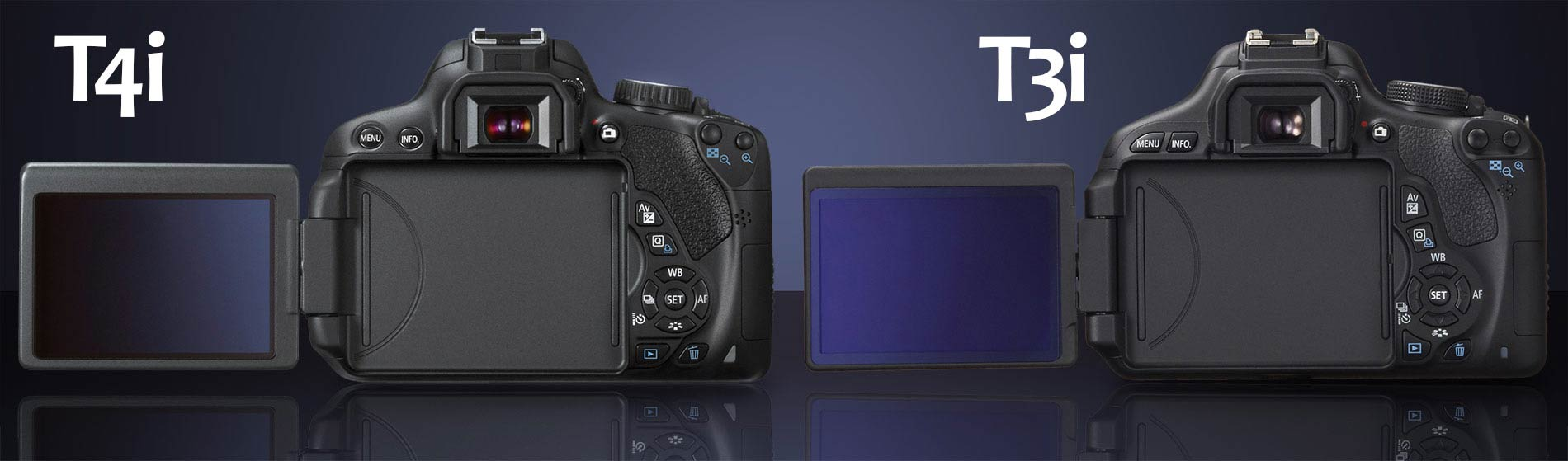 Canon T4i vs T3i : What's the Difference? – Light And Matter
