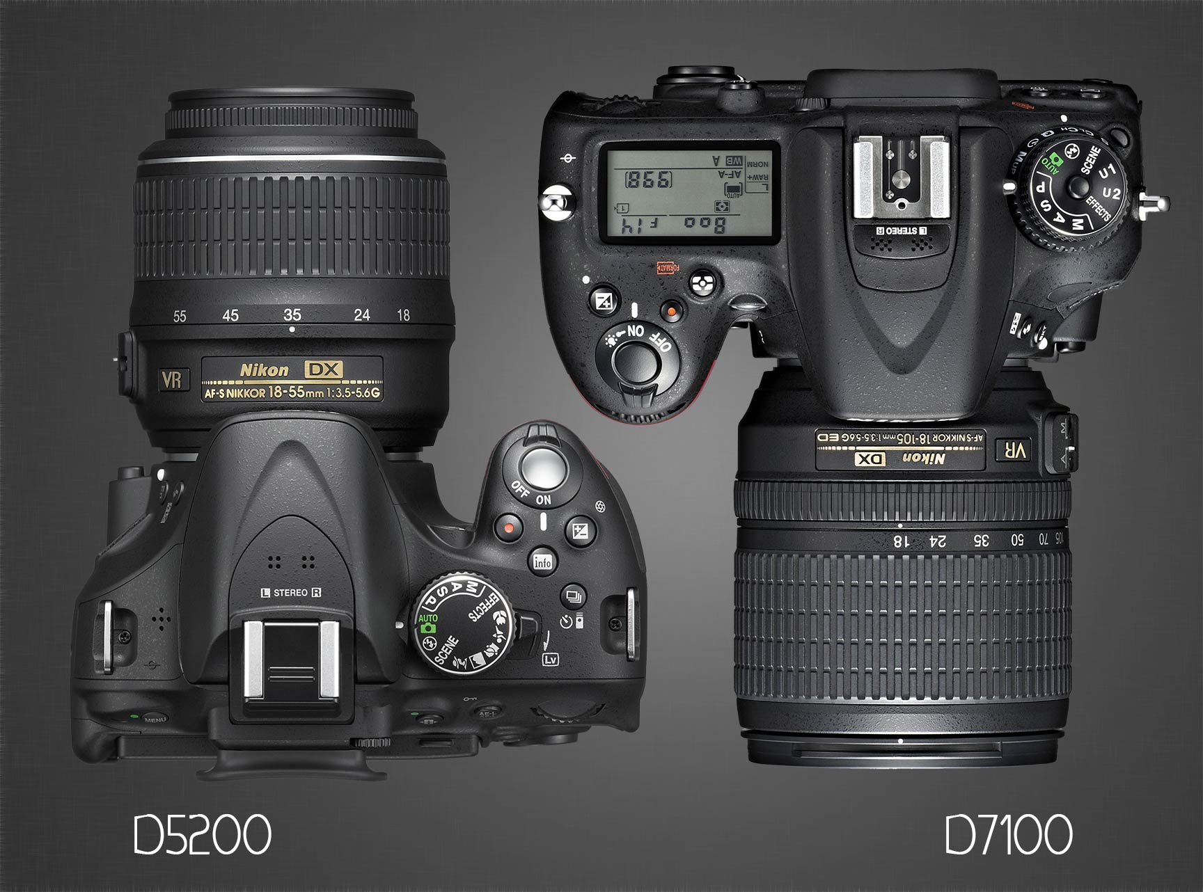Overhead Nikon D7100 and D5200 & Nikon D5200 vs D7100 : Which Should You Buy? - Light And Matter