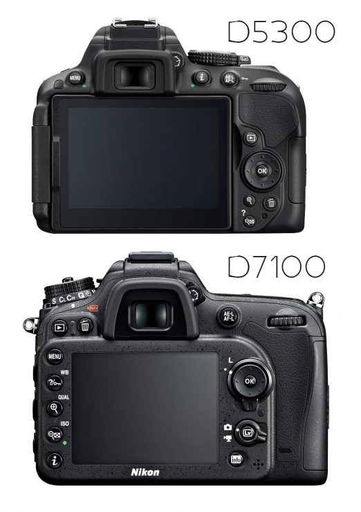 Nikon D5300 and D7100, backs