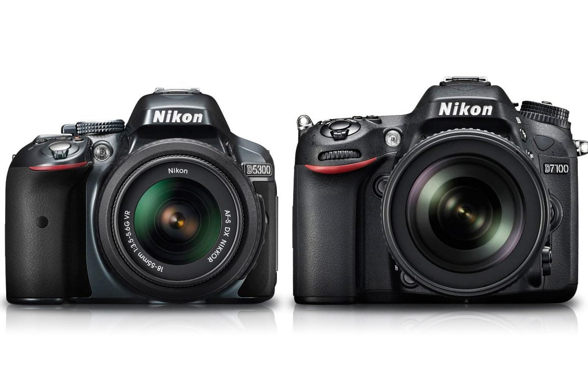 Nikon D5300 vs D7100 : Which Should You Buy? – Light And Matter