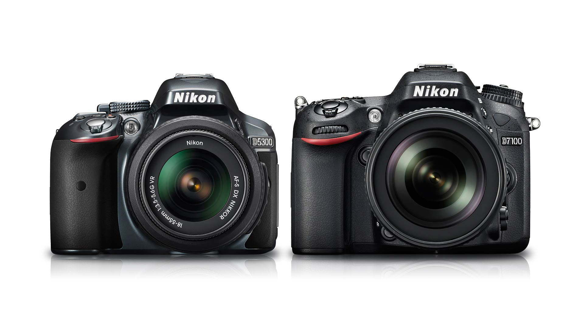 Nikon D5300 Vs D7100 Which Should You Buy Light And Matter