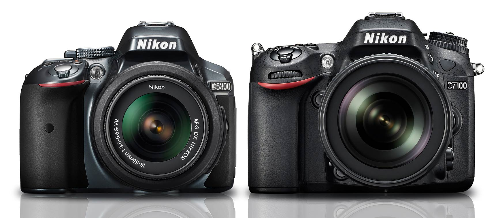 Nikon D5300 vs D7100 : Which Should You Buy? - Light And Matter