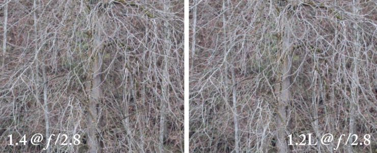 At f/2.8, the images are very similar in the center, though the f/1.2 is still a bit better.