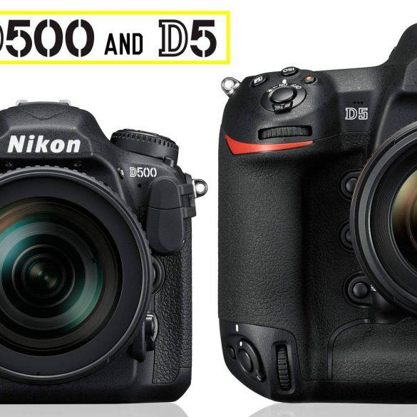 Nikon D500 and D5