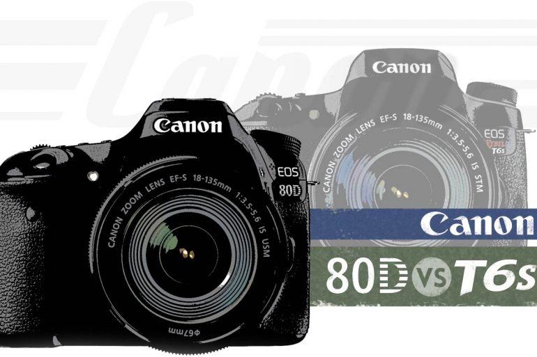 Canon T6s vs 80D