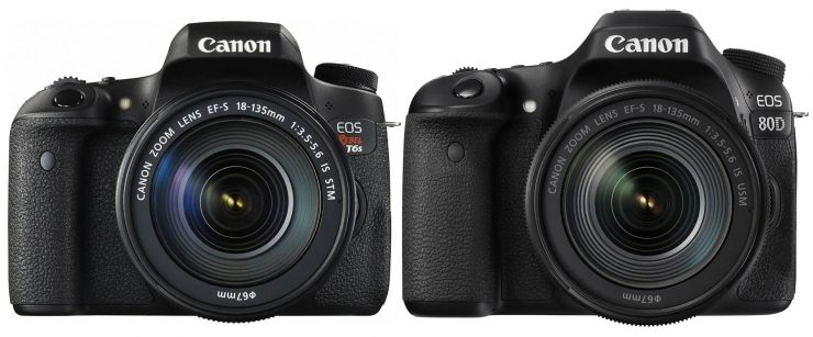 Canon T6s and Canon 80D