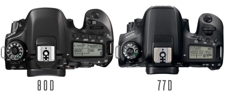 Canon 77D and 80D top views.