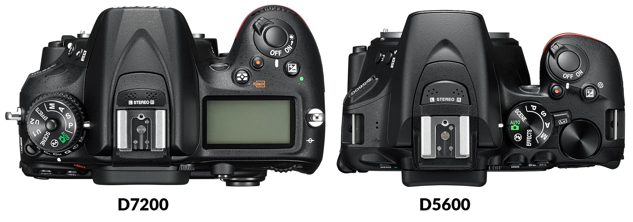 Nikon D5600 vs D7200: Which Should You Buy? – Light And Matter