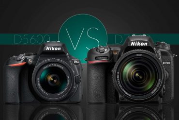Nikon D5600 vs D7500: Which Should You Buy?