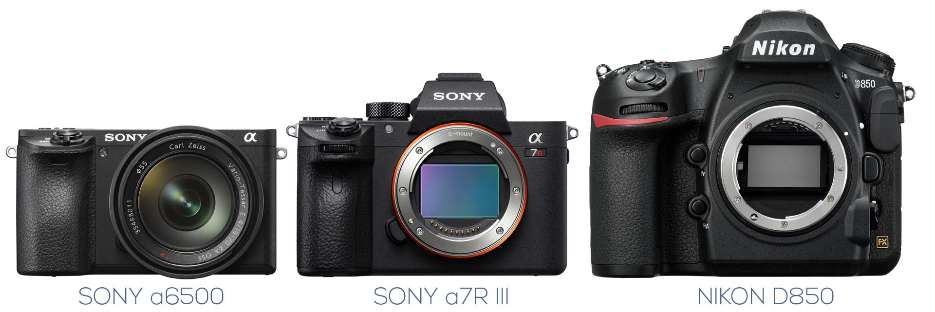 Sony A7R III vs Nikon D850: Which Should You Buy? – Light