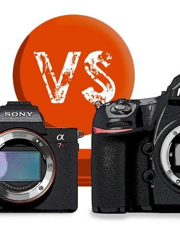 Sony A7RIII vs Nikon D850