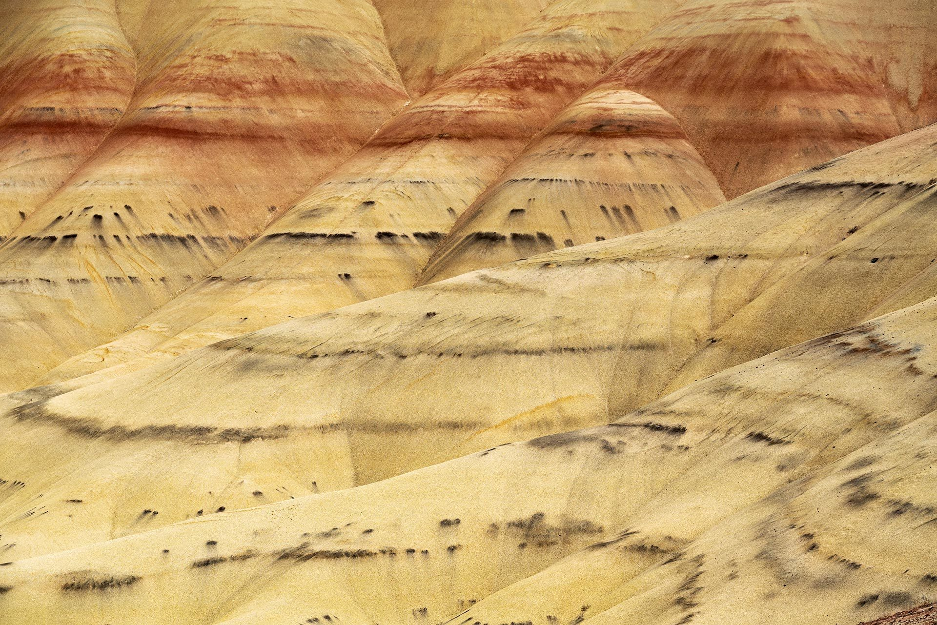 Painted Hills, Oregon. Yellow Landscape with dark spots and rust colored streaks.