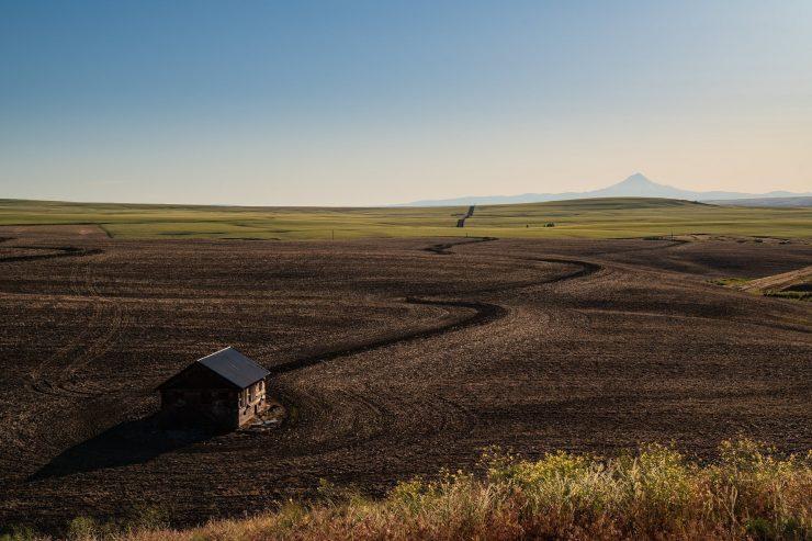 Farmhouse and Mt Jefferson in the background, Oregon