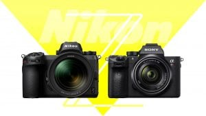Mirrorless Comparison: Nikon Z6 vs Sony A7III – Light And Matter