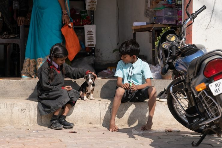 Two kids play with a puppy on the shop steps in Indore, India