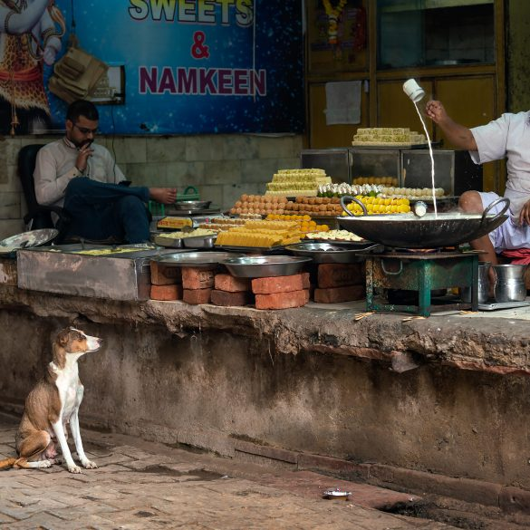 A dog stares longingly at a man pouring sweet milk