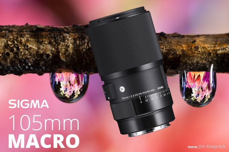 sigma 100mm macro lens photo by Jim Koepnick